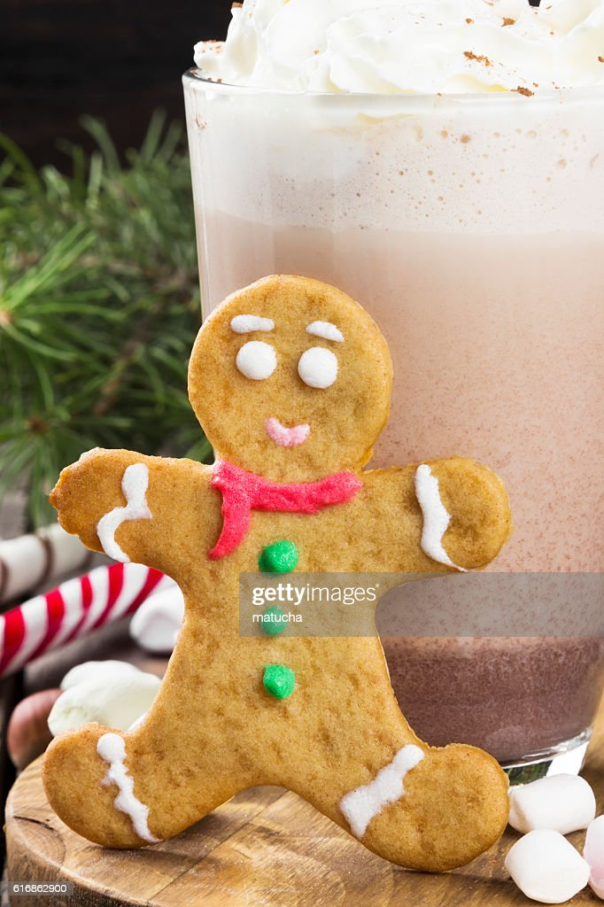Cup of hot cocoa with cream and gingerbread : Stock Photo