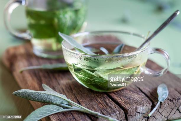 cup of hot sage tea - infused stock pictures, royalty-free photos & images