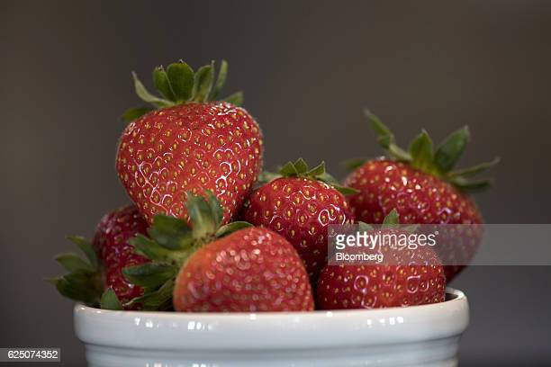 A cup of strawberries is displayed for a photograph at the Driscoll's Inc facility on the Cassin Ranch in Watsonville California US on Monday Sept 19...
