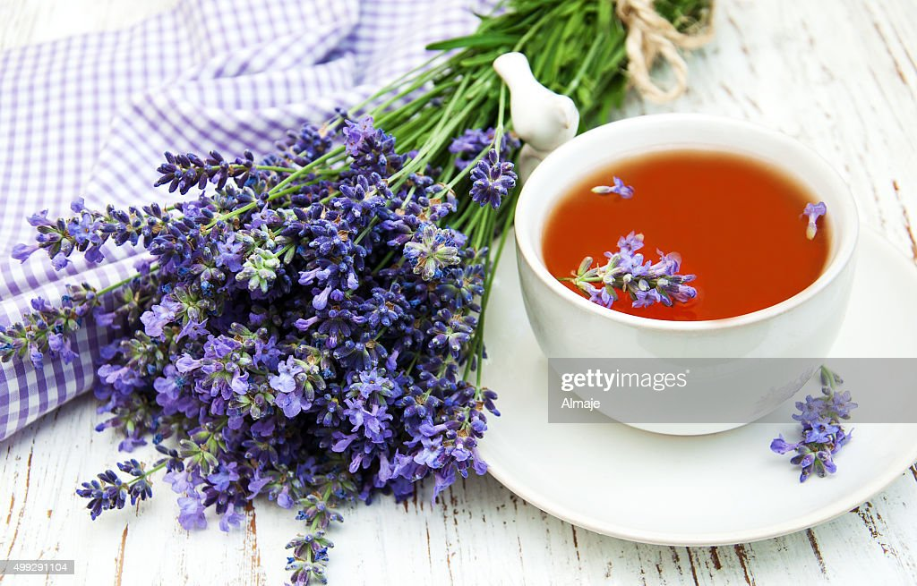 Cup of tea and lavender flowers : Stock Photo