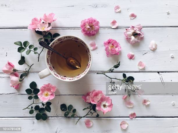 cup of tea and pink roses - julia rose stock photos and pictures