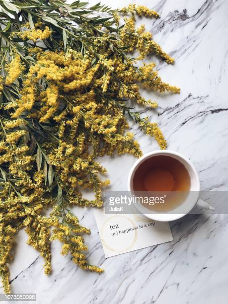 cup of tea, yellow goldenrod flowers and a card with the definition of tea - goldenrod stock pictures, royalty-free photos & images