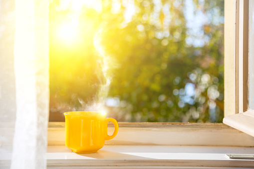 Cup on the window with sun and defocused nature background 1125868527