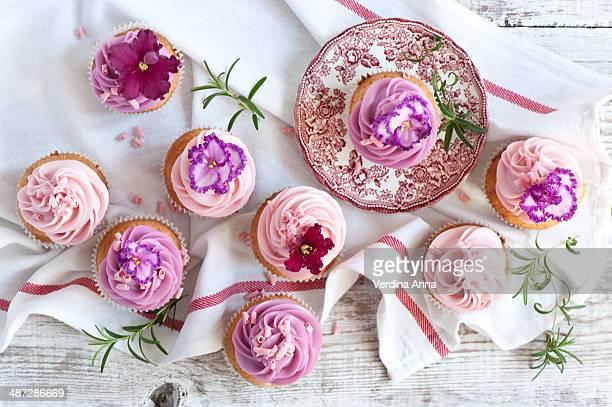 cupcake - anna verdina stock photos and pictures