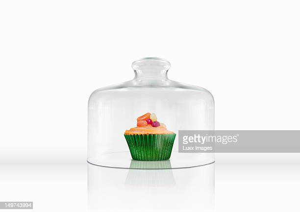 A cupcake under a glass cloche