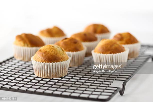 cupcakes on cooling rack - cooling rack stock photos and pictures