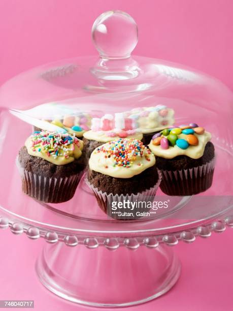 cupcakes under a glass dome - dome stock pictures, royalty-free photos & images