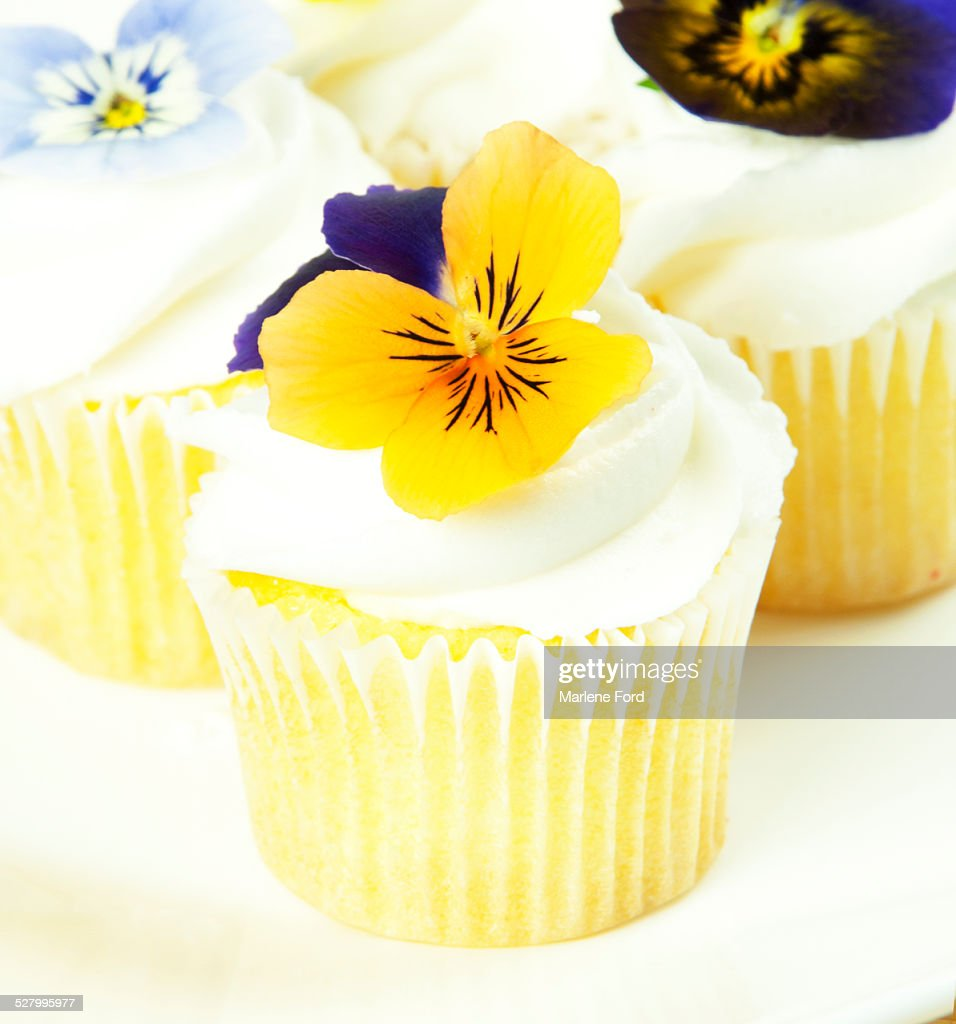 Cupcakes with edible flowers : Stock Photo