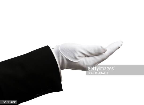 cupped glove hand - stereotypically upper class stock pictures, royalty-free photos & images