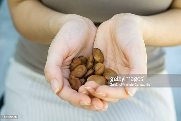 Cupped hands holding large brown seeds