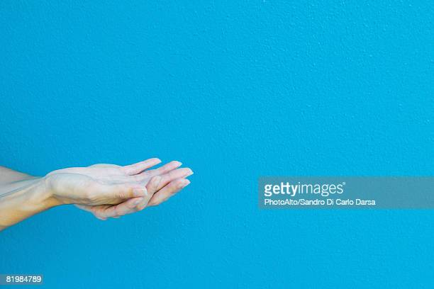cupped hands in front of blue wall, cropped view - request stock pictures, royalty-free photos & images