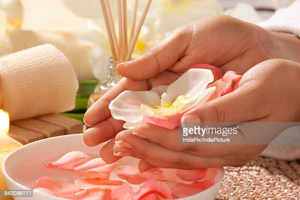 Cupped hands with rose petals and orchid