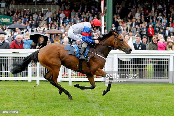 Cupppatee ridden by JP Mcdonald wins the Stallie Lindley memorial at Ripon racecourse on August 31 2015 in Ripon England