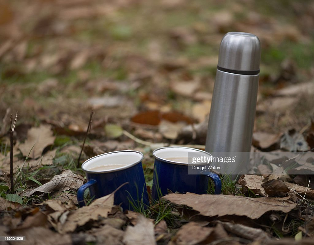 Cups of tea with flask in Autumn leaves. : Stockfoto