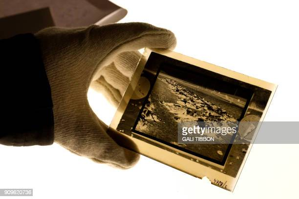 Curator holds an original negative shot in Romania during the holocaust showing bodies of Jewish victims as they arrange the display of a new...