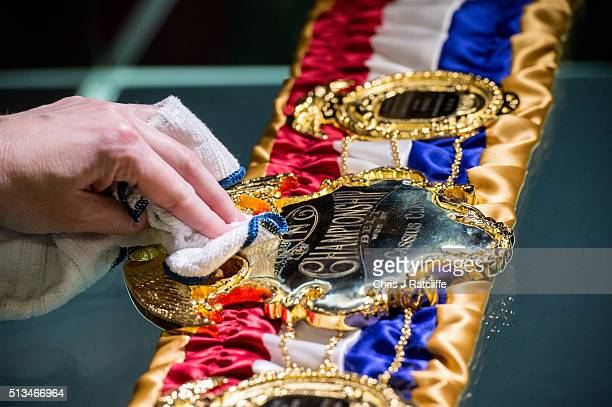 A curator polishes a replica of the Cassius Clay 1964 Championship belt at the preview of the 'I Am The Greatest' Muhammad Ali exhibition on March 3...