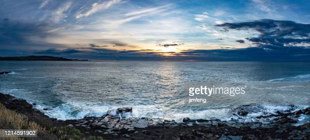 curio bay cliffs at dawn, catlins, new zealand - rocky coastline stock pictures, royalty-free photos & images
