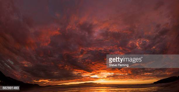 curio bay sunrise - invercargill stock pictures, royalty-free photos & images