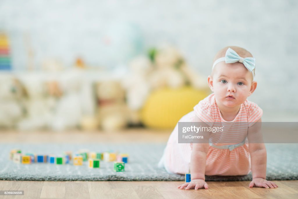 Curious Baby : Stock Photo