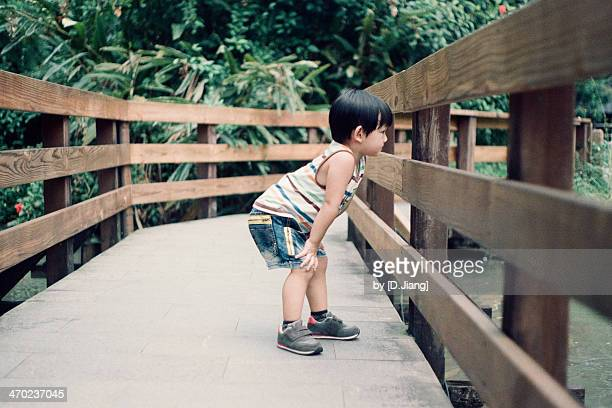 curious boy - hand on knee stock pictures, royalty-free photos & images