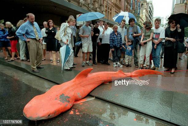 Curious onlookers stare at an orange-painted 3m tiger shark mysteriously dumped in a pedestrian mall in Sydney, 20 March 2000, along with a note...
