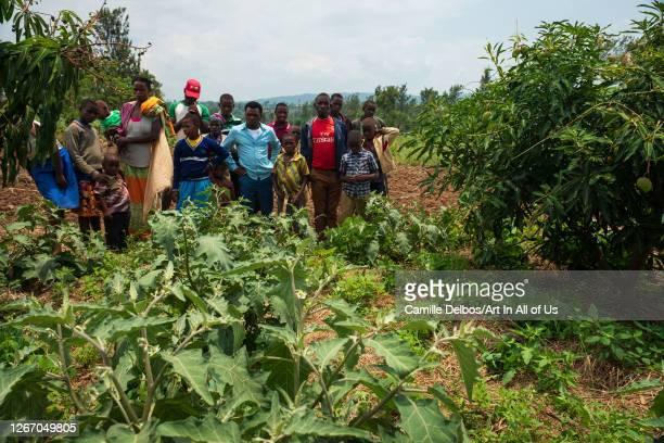 KAJEVUBA BUGESERA RWANDA SEPTEMBRE 20 Curious villagers gathering next a garden egg plantation on Septembre 20 2018 in Kajevuba Bugesera Rwanda