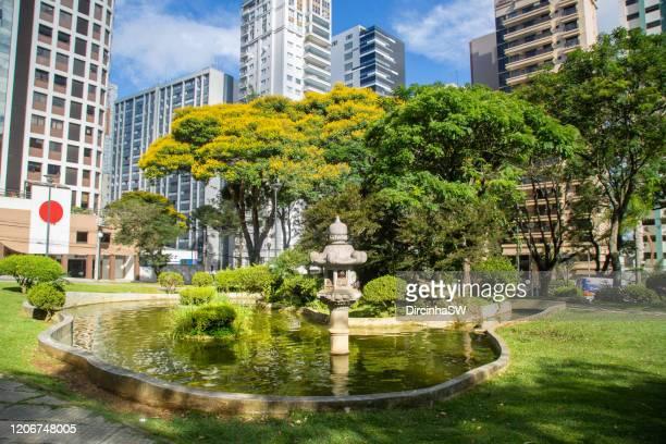 curitiba, paraná, brazil - curitiba stock pictures, royalty-free photos & images