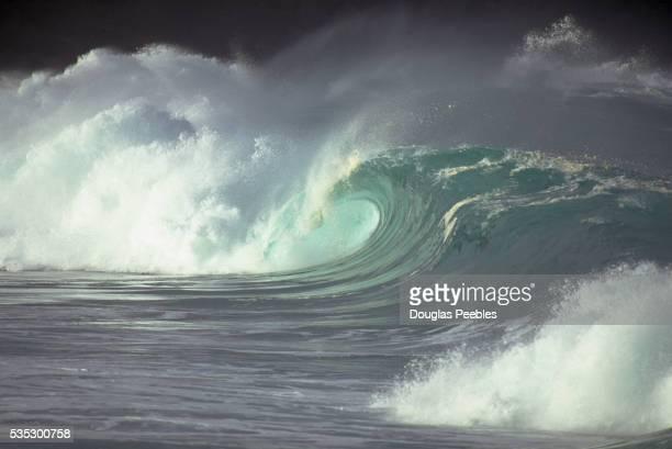 curling, crashing waves in waimea bay - waimea bay - fotografias e filmes do acervo