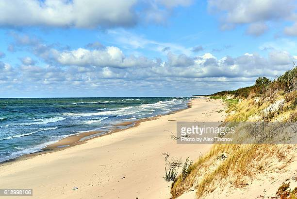 curonian spit - kaliningrad stock pictures, royalty-free photos & images