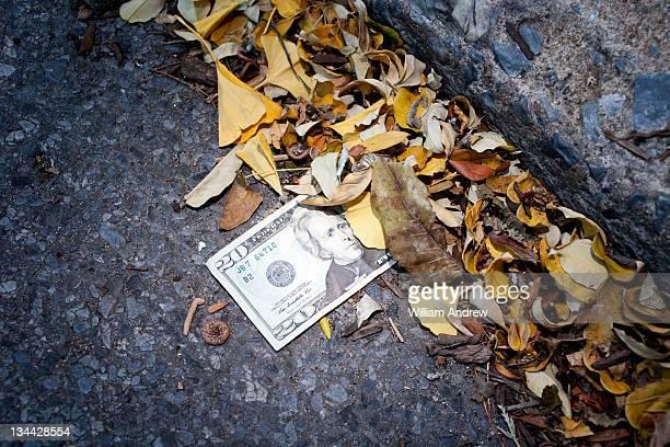 $20 US currency bill stuck in gutter