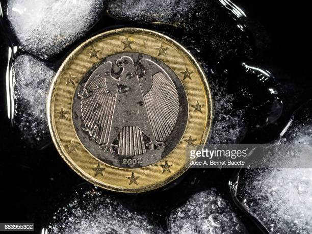Currency of an Euro of Germany between chunks of ice, concept on the monetary crisis of the euro-zone