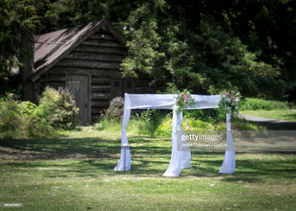 Curtain Decoration On Grassy Field In Yard : Stock Photo
