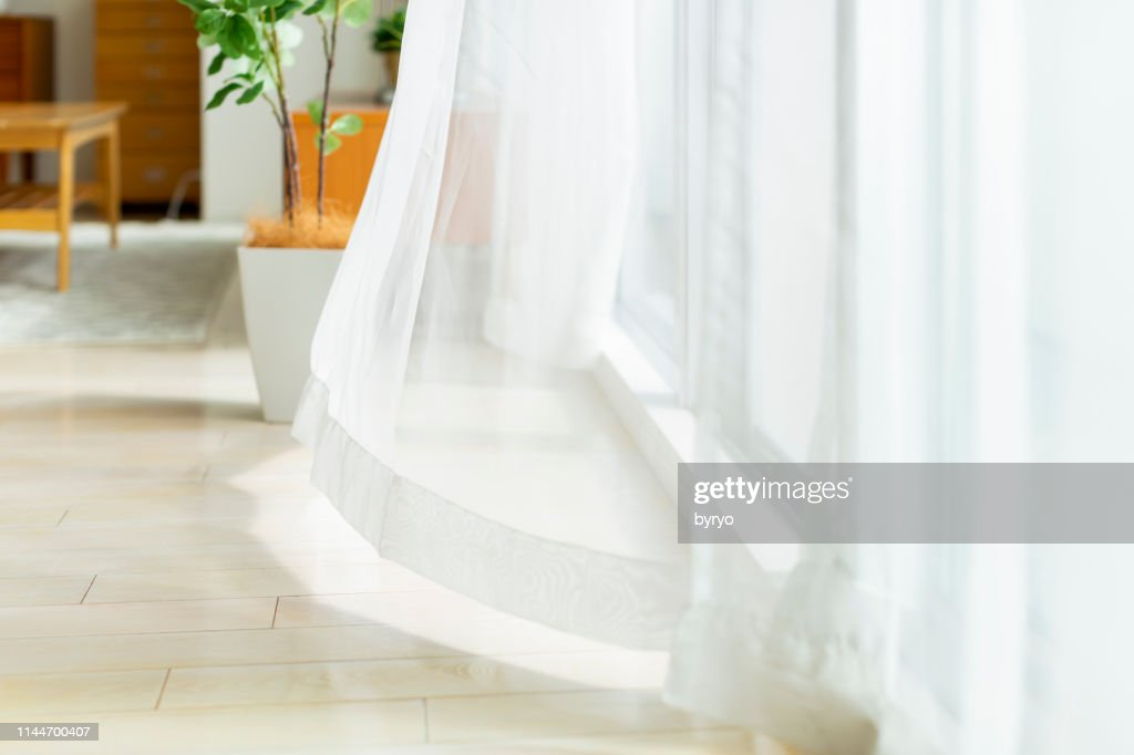Curtain swaying in the wind : Stock Photo