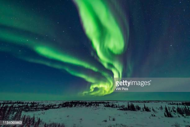 Curtains of aurora during an active storm on February 18, 2018 from the Churchill Northern Studies Centre, in the early evening in the last of the...