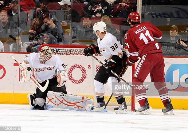 Curtis McElhinney of the Anaheim Ducks makes a save against the Phoenix Coyotes on January 15, 2011 at Jobing.com Arena in Glendale, Arizona.