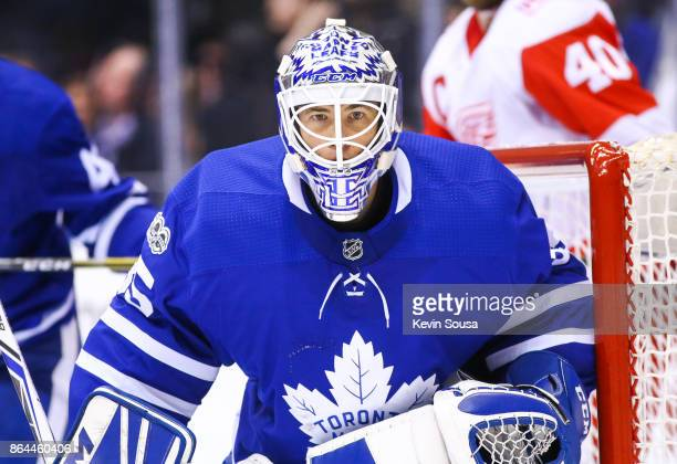 Curtis McElhinney of the Toronto Maple Leafs during the third period at an NHL game against the Detroit Red Wings at the Air Canada Centre on October...