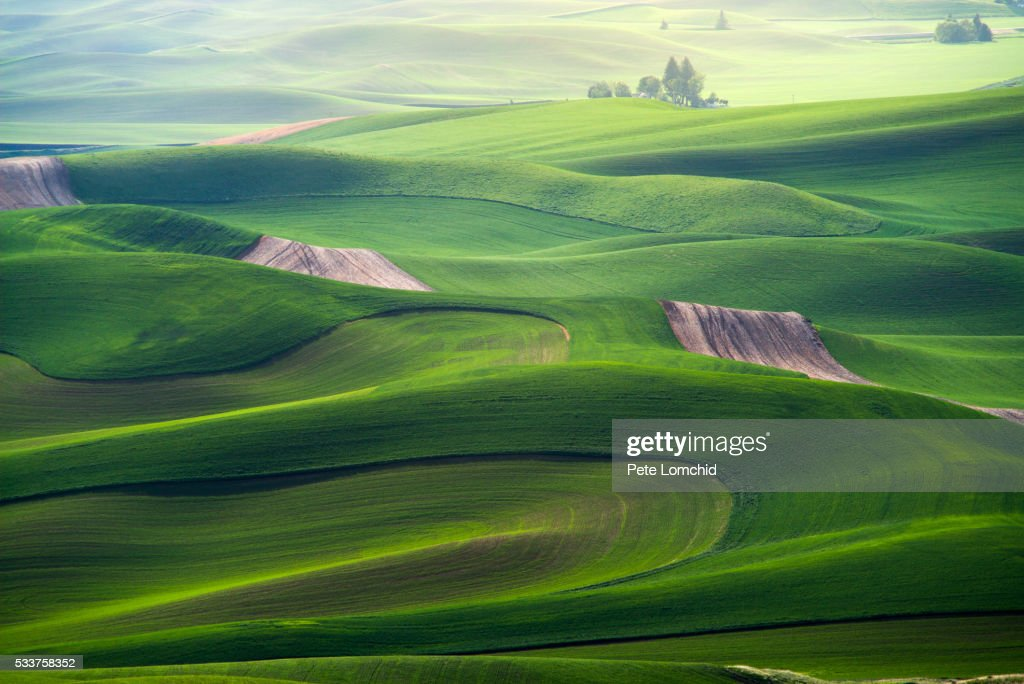 curve of the green hills : Foto stock