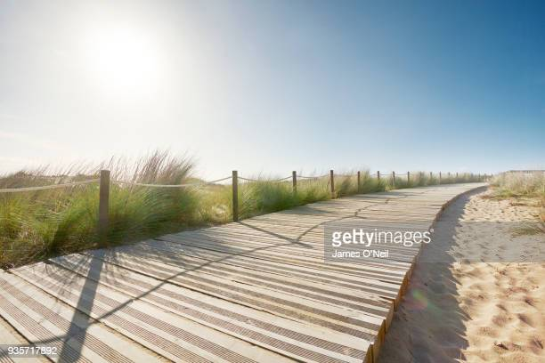 curved boardwalk along beach on sunny day, portugal - boardwalk stock pictures, royalty-free photos & images