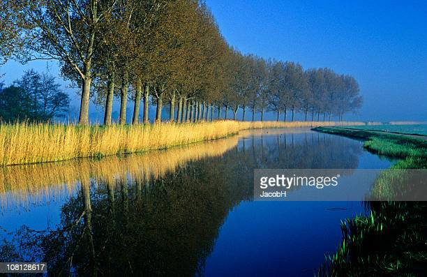 Curved Canal with Trees