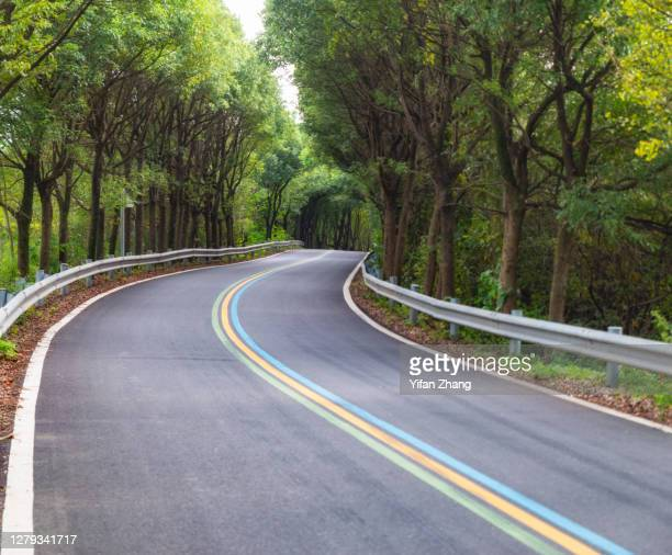 a curved rainbow-sign road through the forest - changzhou stock pictures, royalty-free photos & images