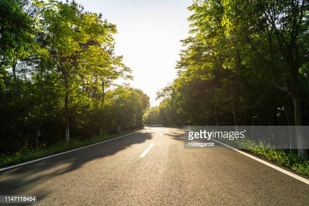 curved road and natural landscape, auto advertising background - nanjing road stockfoto's en -beelden
