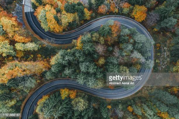 curved road during autumn in the bavarian alps as seen from above, germany - straßenverkehr stock-fotos und bilder