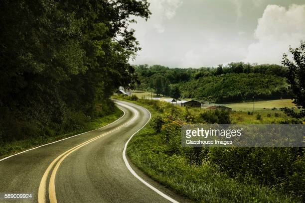 Curved Road Surrounded by Greenery