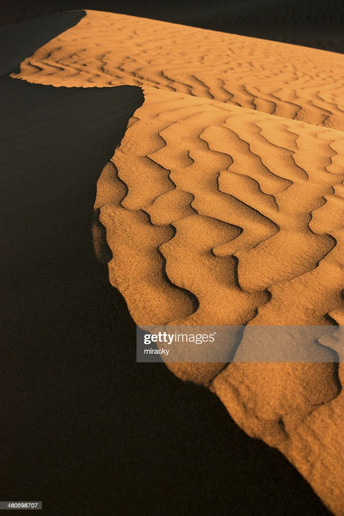 Curves of sand dune shadow : Stock Photo
