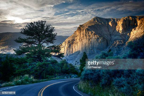 curving road in yellowstone, dusk - yellowstone national park stock pictures, royalty-free photos & images