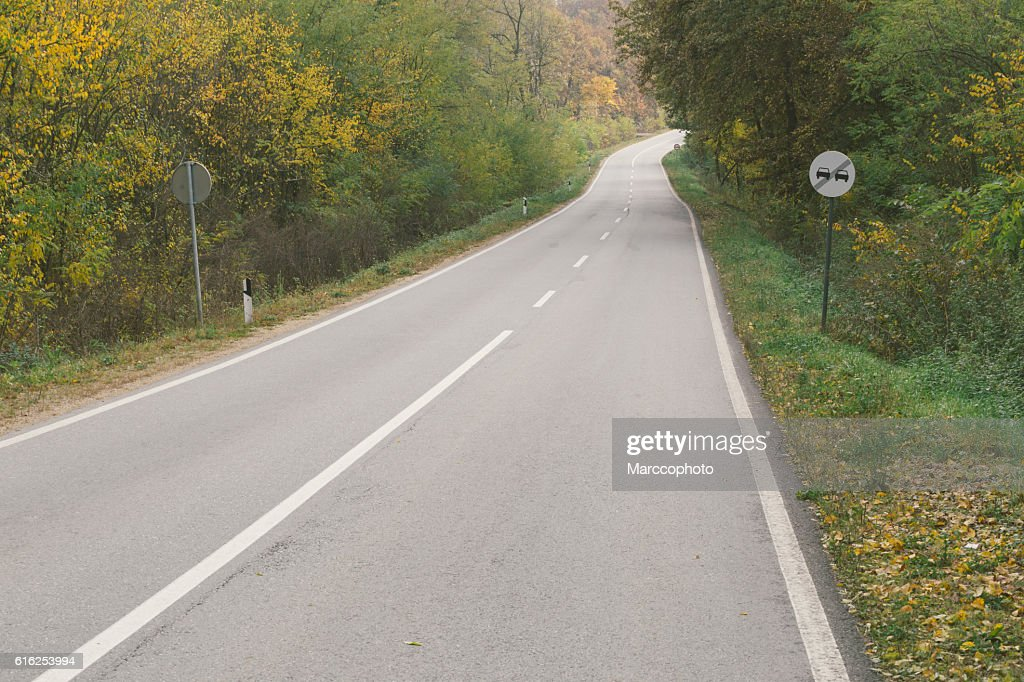 Curvy asphalt road through woods in autumn : Foto de stock