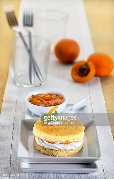 Custard and apricot jam torte