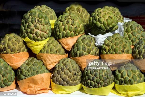 custard apple fruit (fruta-do-conde) - fruta stock photos and pictures