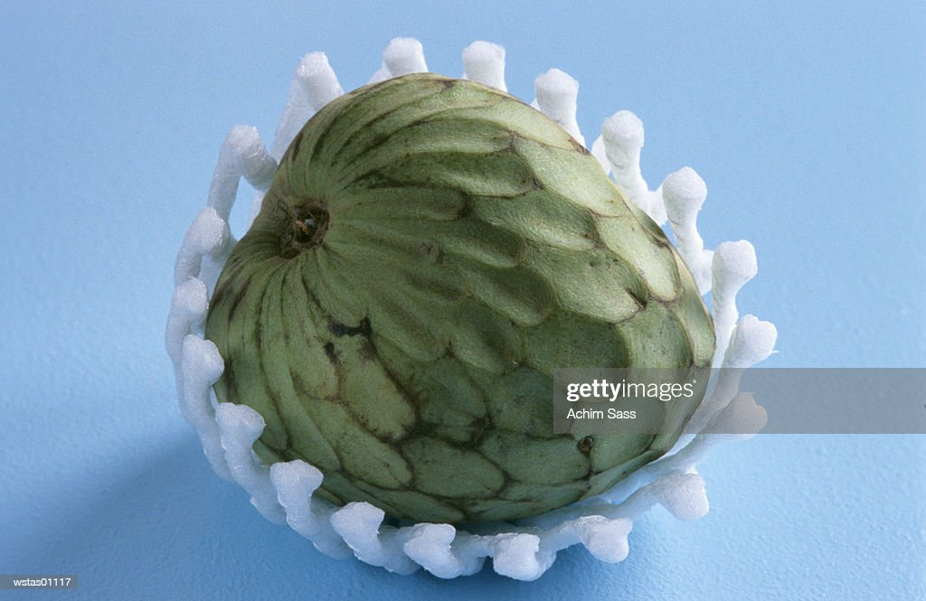 Custard apple : Foto de stock