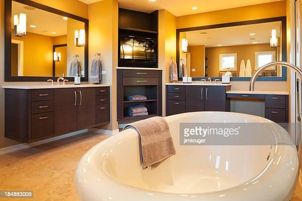 Custom master bathroom with jacuzzi tub.